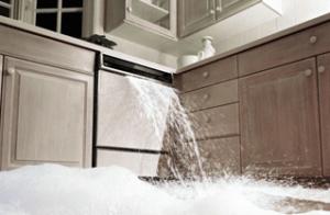 dishwasher-no-drain
