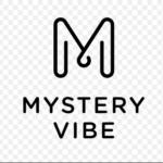 Startup profile: MysteryVibe