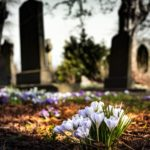 What is a Funeral Plan and why you should take one out?