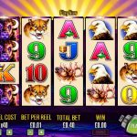 Why Buffalo Slots Was So Popular in 2018