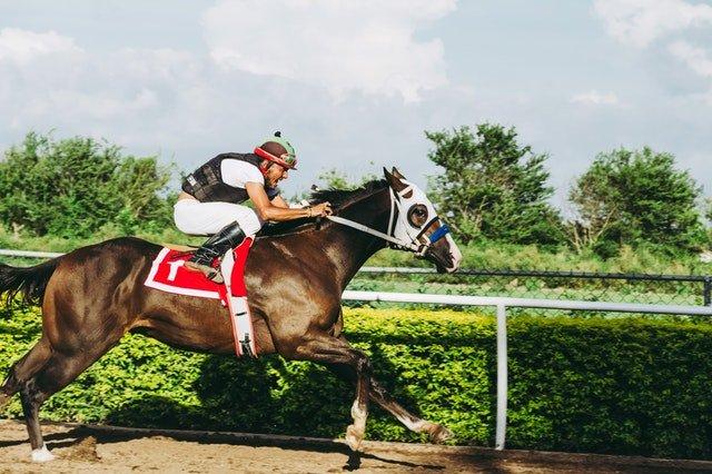 horseracing-gambling