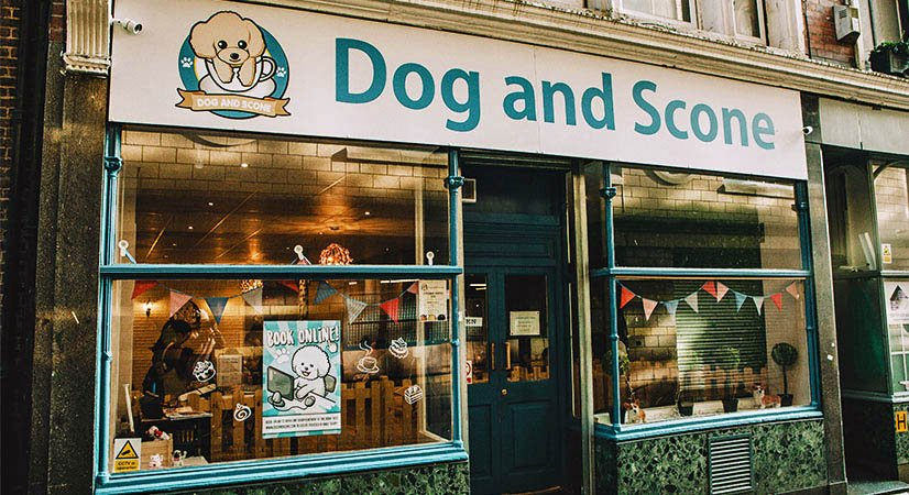 Dog-and-Scone-dog-cafe