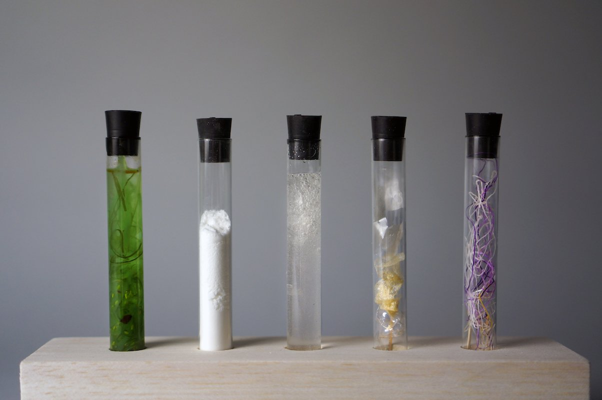 AlgiKnit, a sustainable textile startup turning kelp into fabric