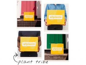 Allplants box