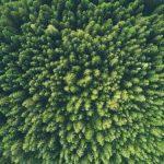 Cleantech Start-Up Secures Investment For Zero-Emission Transport Refrigeration