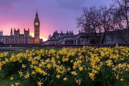 westminster-london