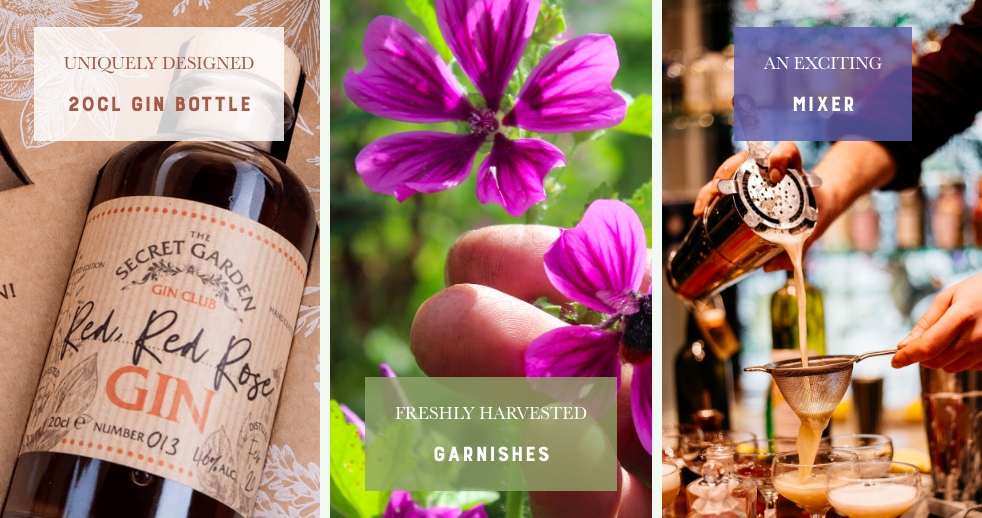 The-Secret-Garden-Gin-Club-subscription-box-products