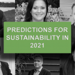 Predictions for Sustainability in 2021 – What The Experts Say