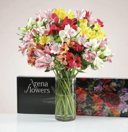 Arena-Flowers