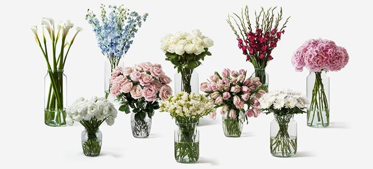Flowerbx-flowers