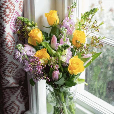 Vela-flowers
