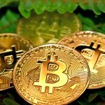 Crypto Crash: Bitcoin Bashers and Crypto Cynics Are Wrong – Here's Why